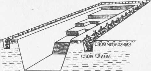 Схема домашнего пруда