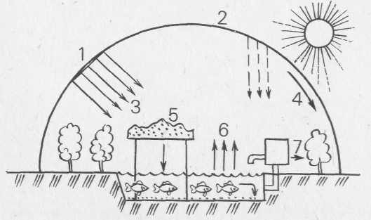 Схема теплицы-пруда: 1