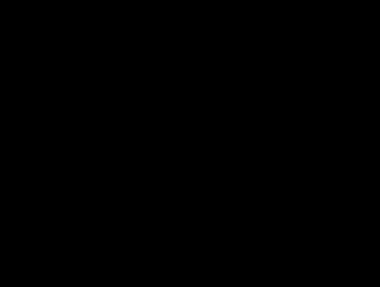 Схема раскопов и траншей,