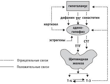 статины последнего поколения название препаратов отзывы