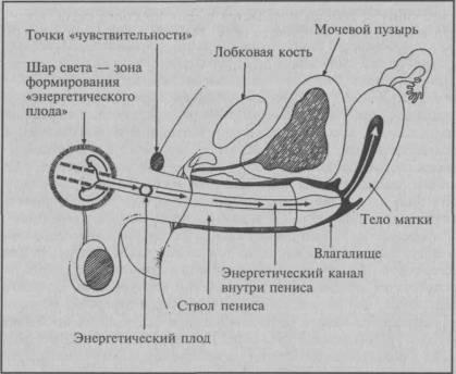skolko-orgazmov-u-muzhchin