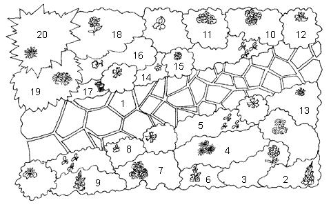 Схема размещения цветов в