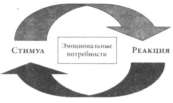Цикл «Стимул — реакция»