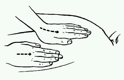Глава 3 основные массажные приемы и их